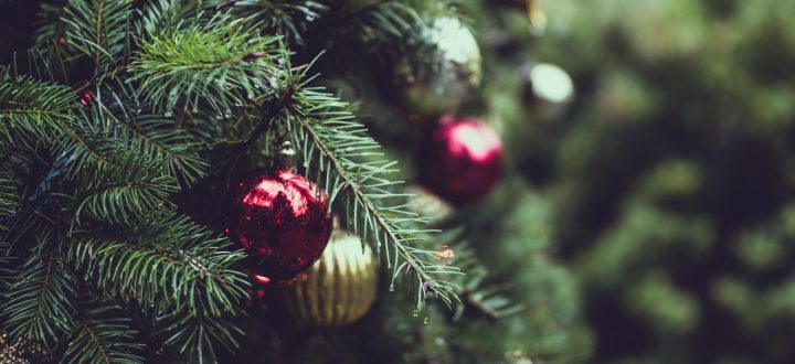 How to Enjoy Christmas Aboard Your Boat