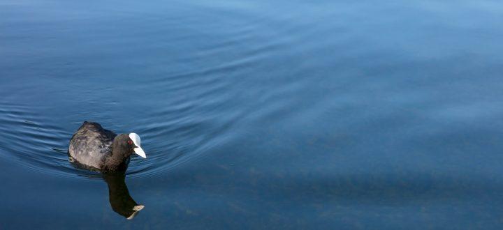 Exploring Britain's Canals By Kayak | Lakeland Leisure Boat Sales