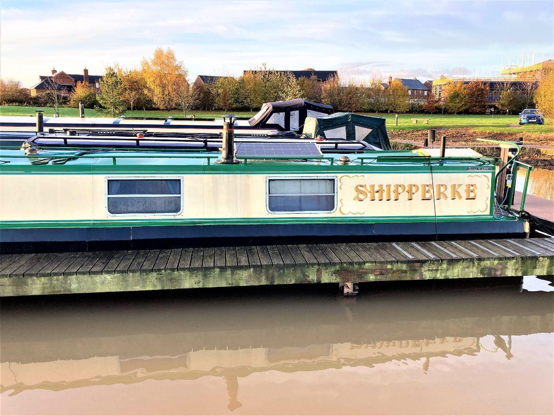 Shipperke 7